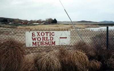 Exotic World - Capturing the Magic: Chris Beyond