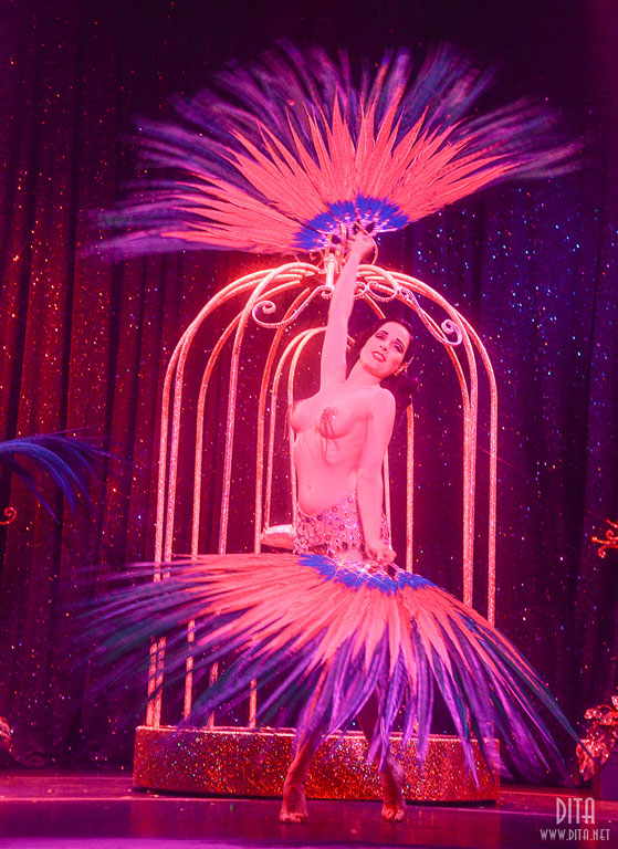 Dita Von Teese in Strip Strip Hooray!  in Chicago, 2013.  ©Scott Harrison