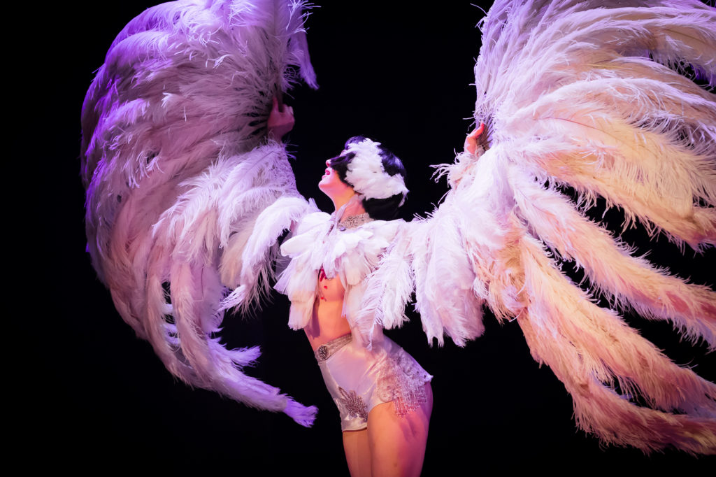 Burlesque performer Vicky Butterfly at Hundred Watt Club, by Featherpic.co.uk